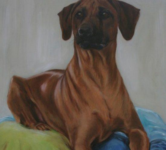 Goof-dieren-portret-Dioni-ten-Busschen 1