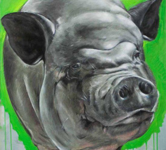 sjefke-2007-dieren-portret-Dioni-ten-Busschen-1